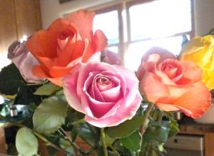 Birthday roses!